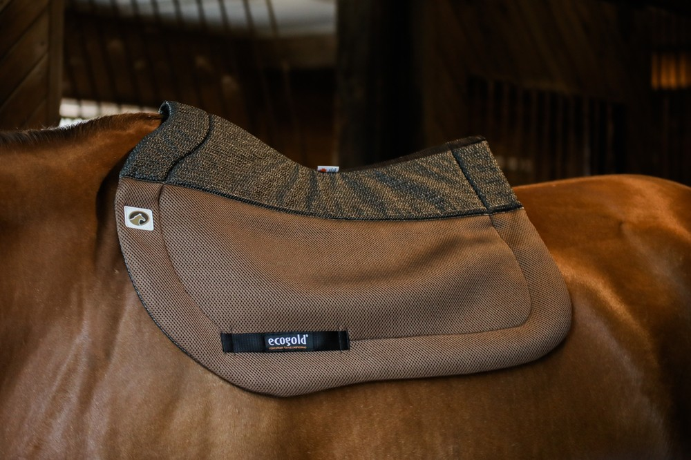 Best Saddle Pad Colors for Fall 2018