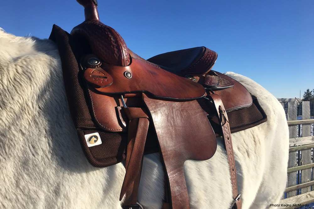 Ecogold Releases New Western Saddle Pads